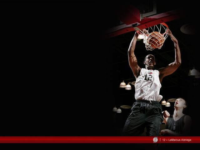 lamarcus-aldridge wallpaper_large.jpg